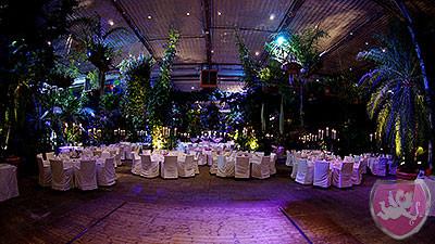 Giardino Verde Uitikon Gewächshaus Hochzeit Heiraten Wedding DJ Dubi