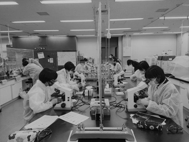 Experiments 筑紫高校