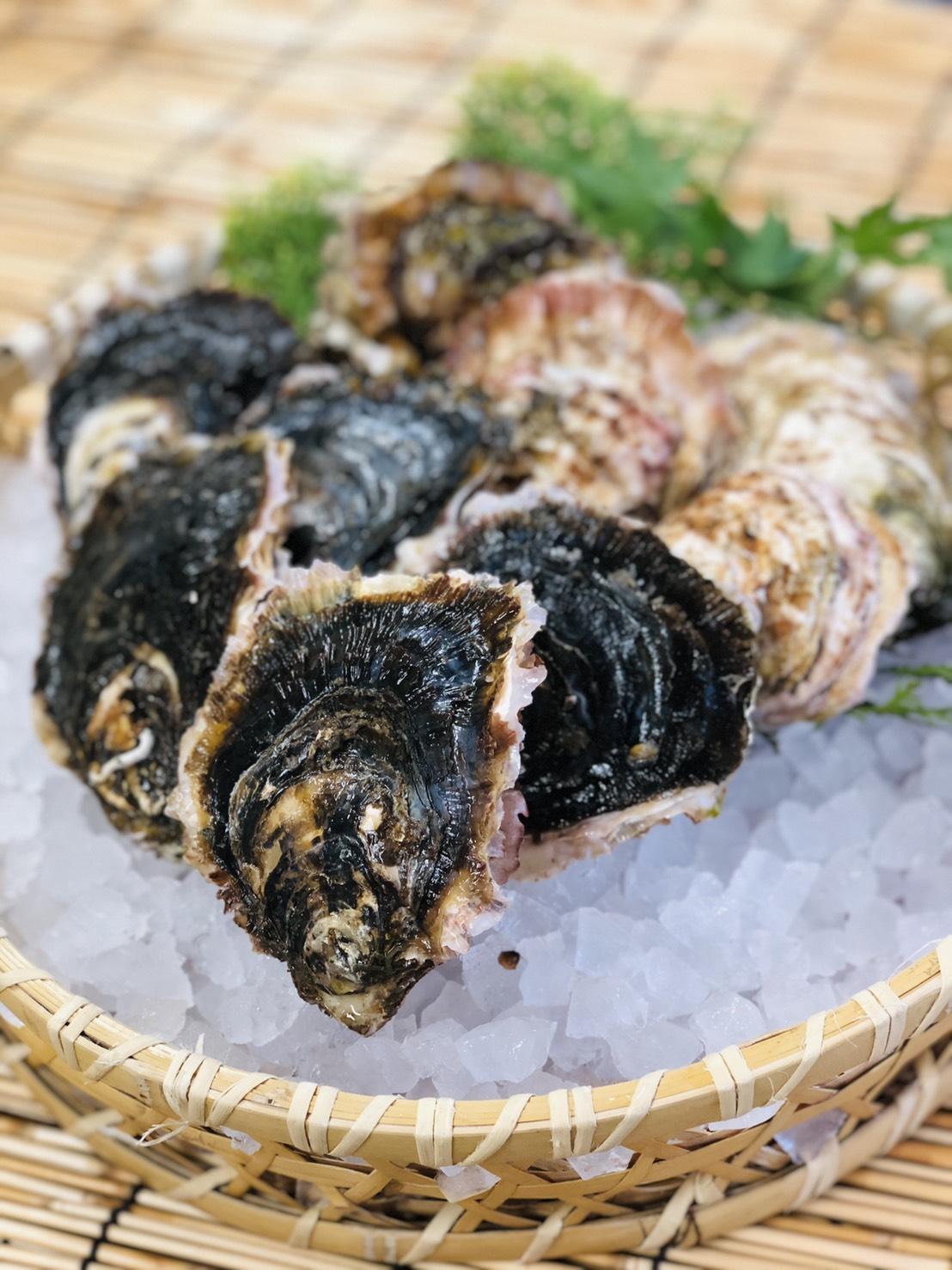 坂越産岩牡蠣