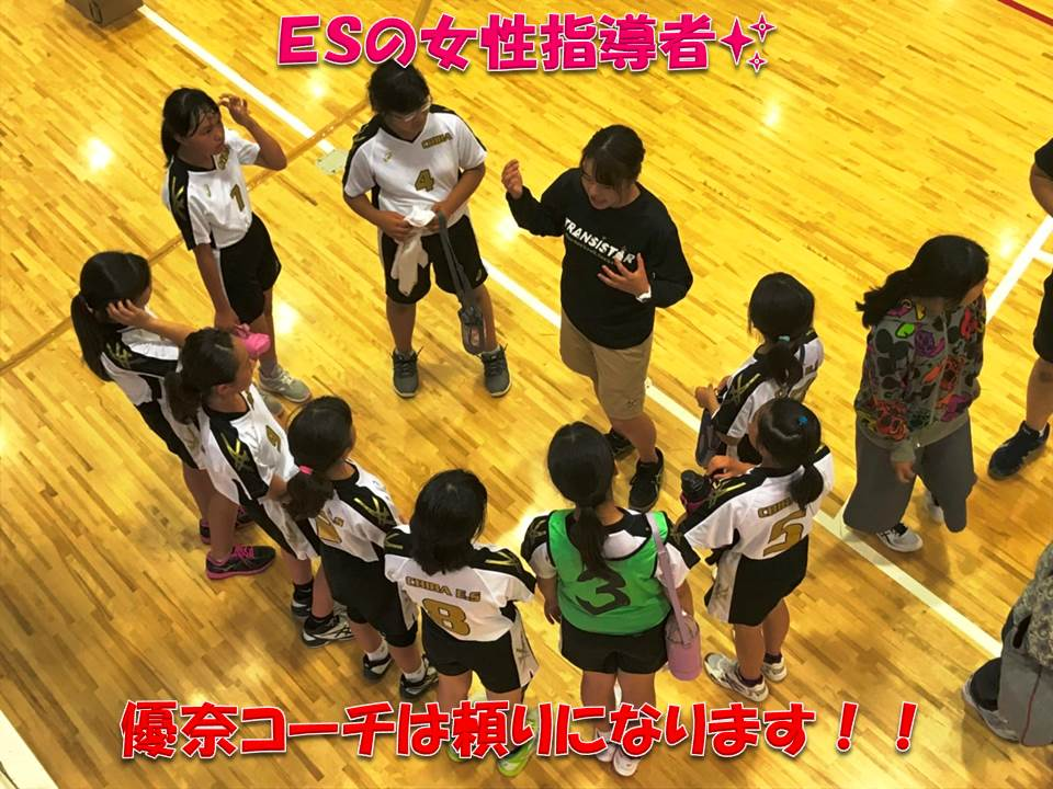 千葉 市 ハンドボール 協会 加盟団体|千葉県スポーツ協会について|公益財団法人