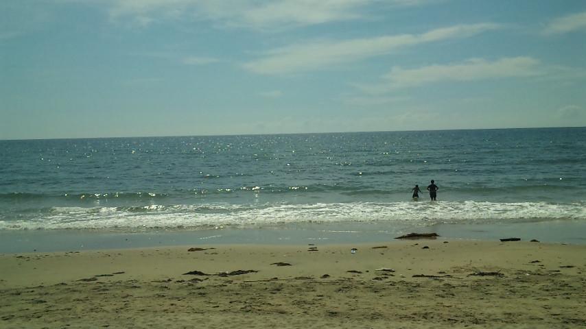 海、ひとり占めですね。畳、入れるの楽しみです。