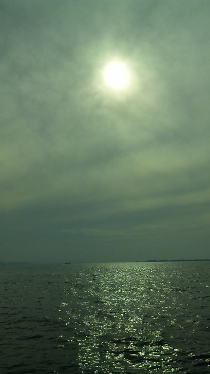うす曇りで絶好の釣り日和です。