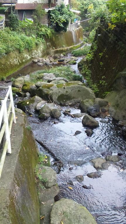 川の流れる静かな所です。