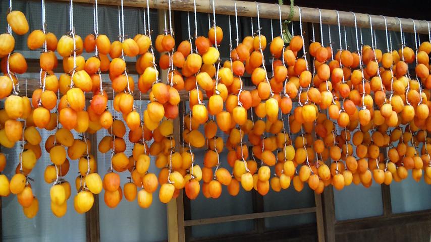 オレンジ色が目に付きます。