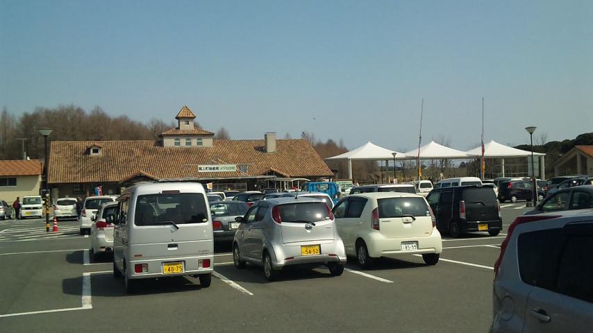 メタセの森 駐車場いっぱいです。