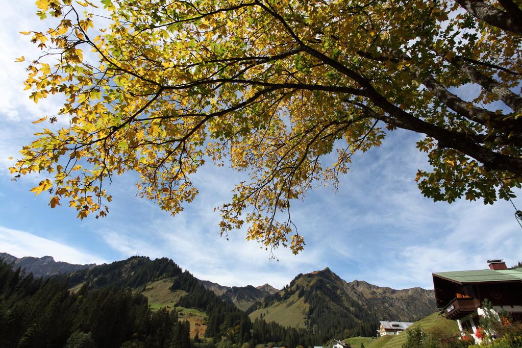 Haus Erika – Herbstpanorama