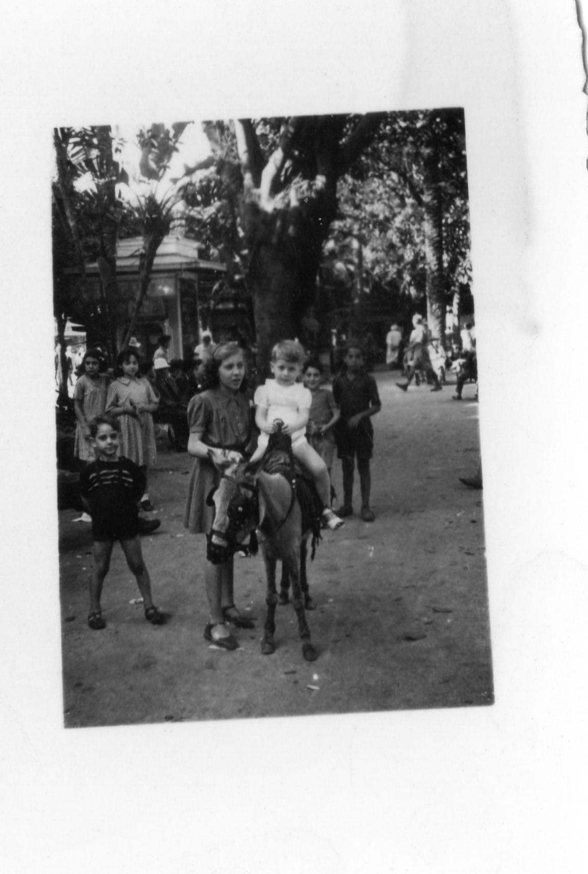 Algeri 1943