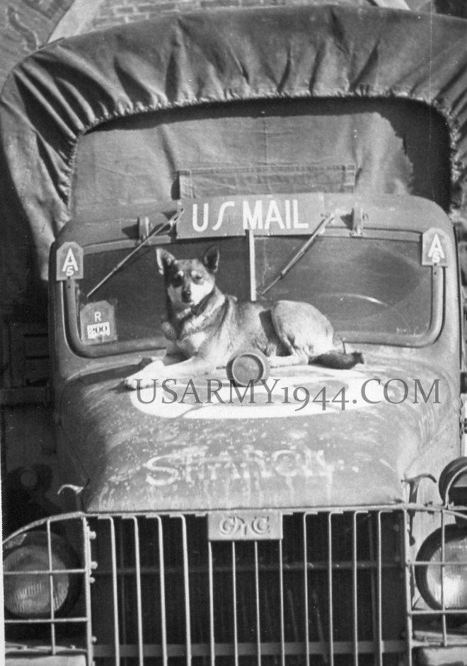 Frenchy's dog  1944