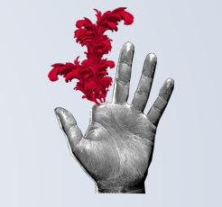 La main verte (France inter),  ledimanche 29 novembre 2020  par Alain Baraton