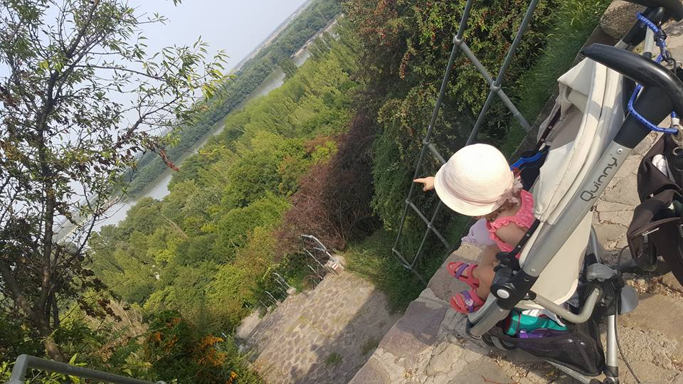 ...Blick auf die Donau...