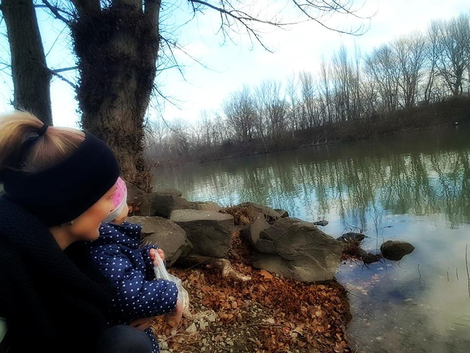 ...Enten füttern bei der Donau...
