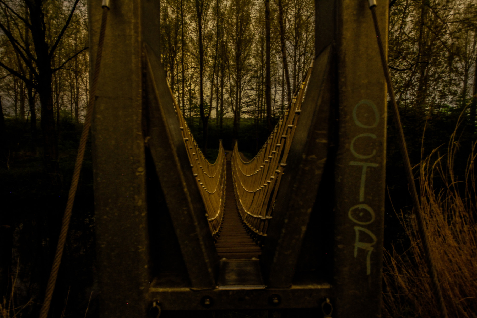 Nachtfoto brug Balijbos Zoetermeer - DOKOE Fotografie