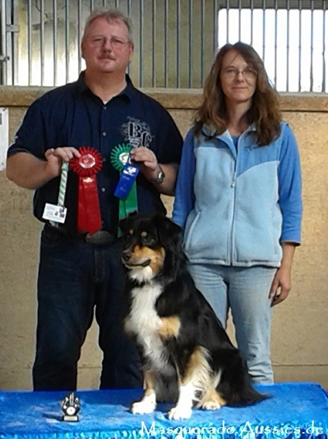 Pätkis 1. Platz ODX; Obedience AWARD. DANKE an Judge H. G. Geisel