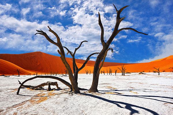 fantastisches#Namibia