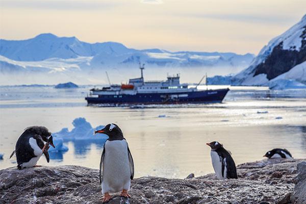fantastische#Antarktis