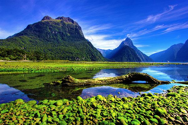 fantastische#Südinsel