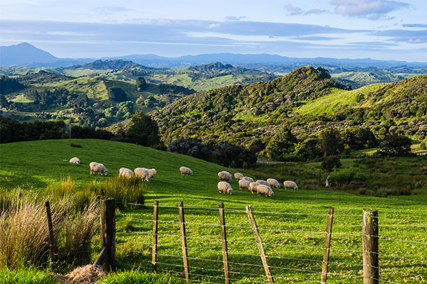 fantastisches#Neuseeland