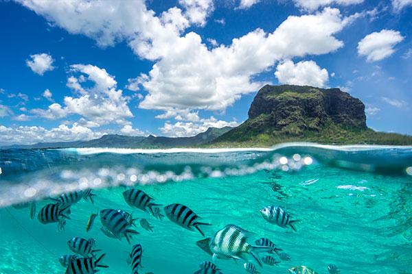 fantastisches#Mauritius
