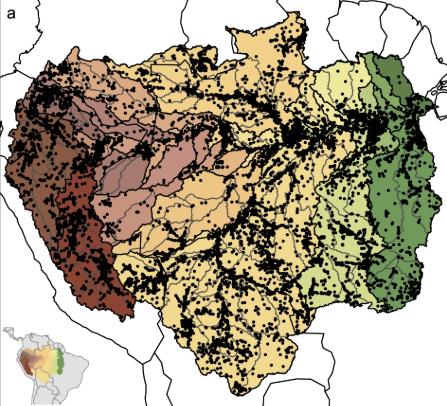 Distribuição dos locais de amostragem registrados na base de dados de Amazon Fish. Fonte e elaboração: Amazon Fish.