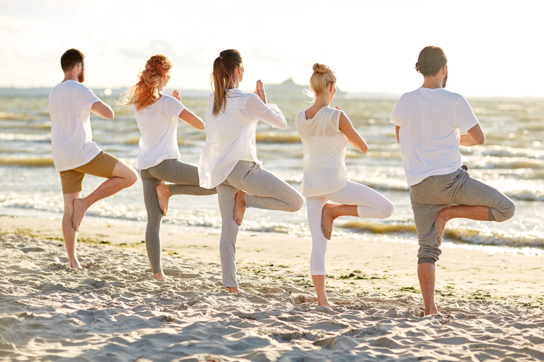 Dozentenpool Verband Der Yogalehrenden Im Kneipp Bund