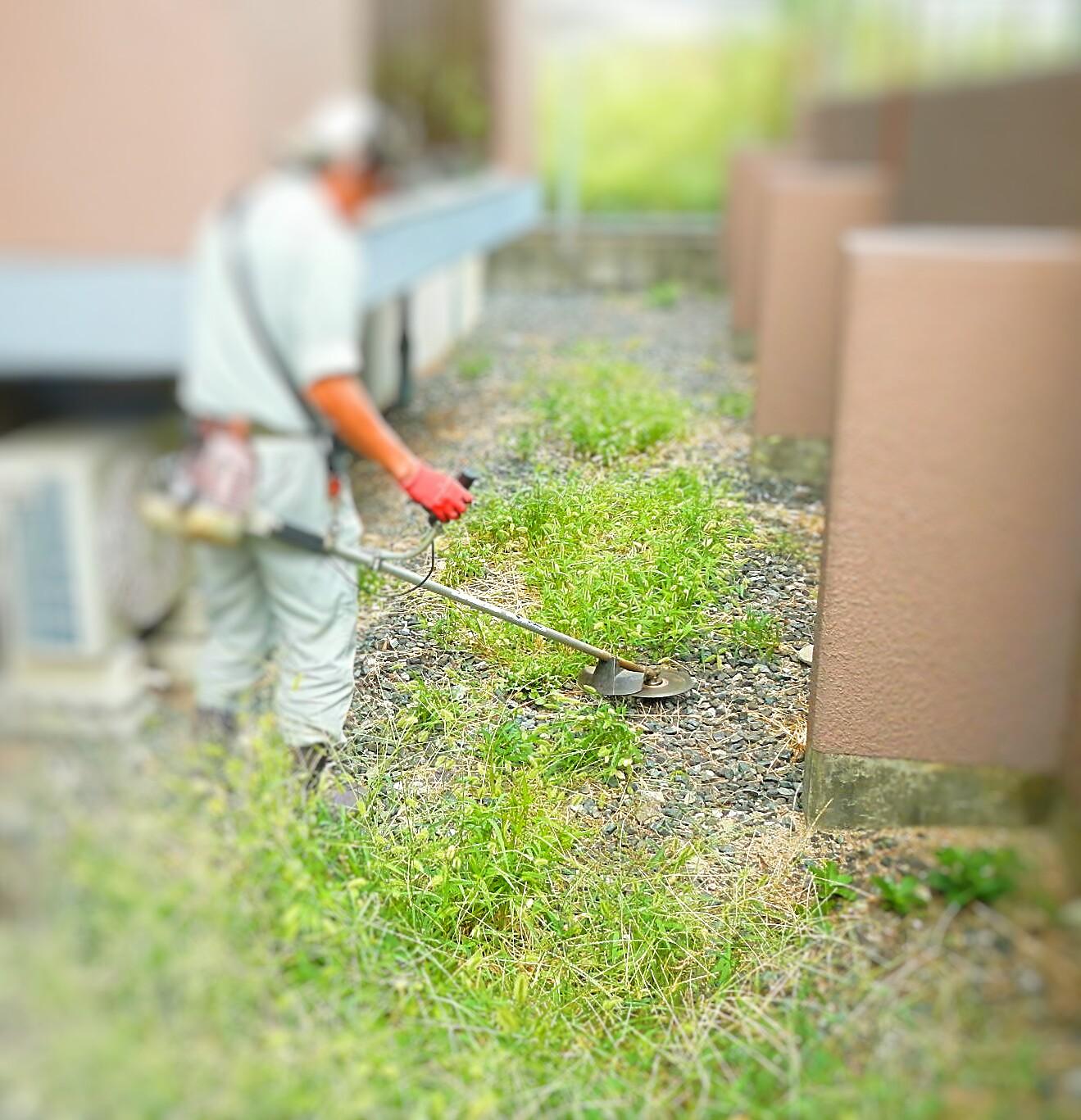 機械刈り 除草中