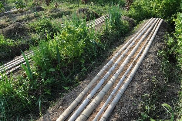 ビニールマルチなど使い捨てになる農業資材は極力使用しません。