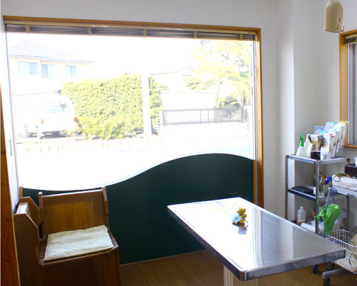 診察室は外が見えるので、開放的で動物たちの緊張もほぐれます。