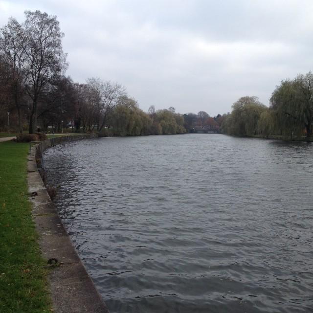 28.11.14: der erste lange Lauf entlang dem Alsterlauf (16km).