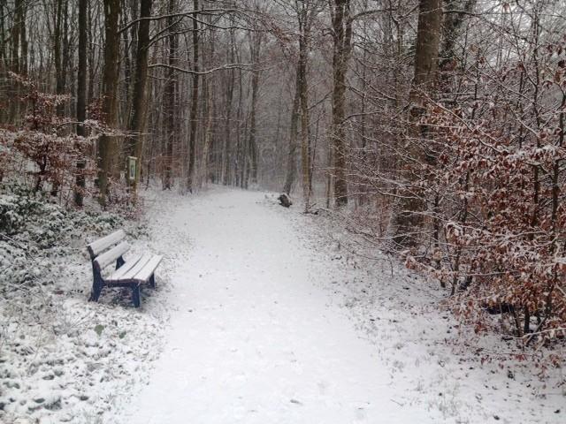 24.01.15: ein langer Lauf (26km) bei Schnee um Kellersee und Ukleisee.