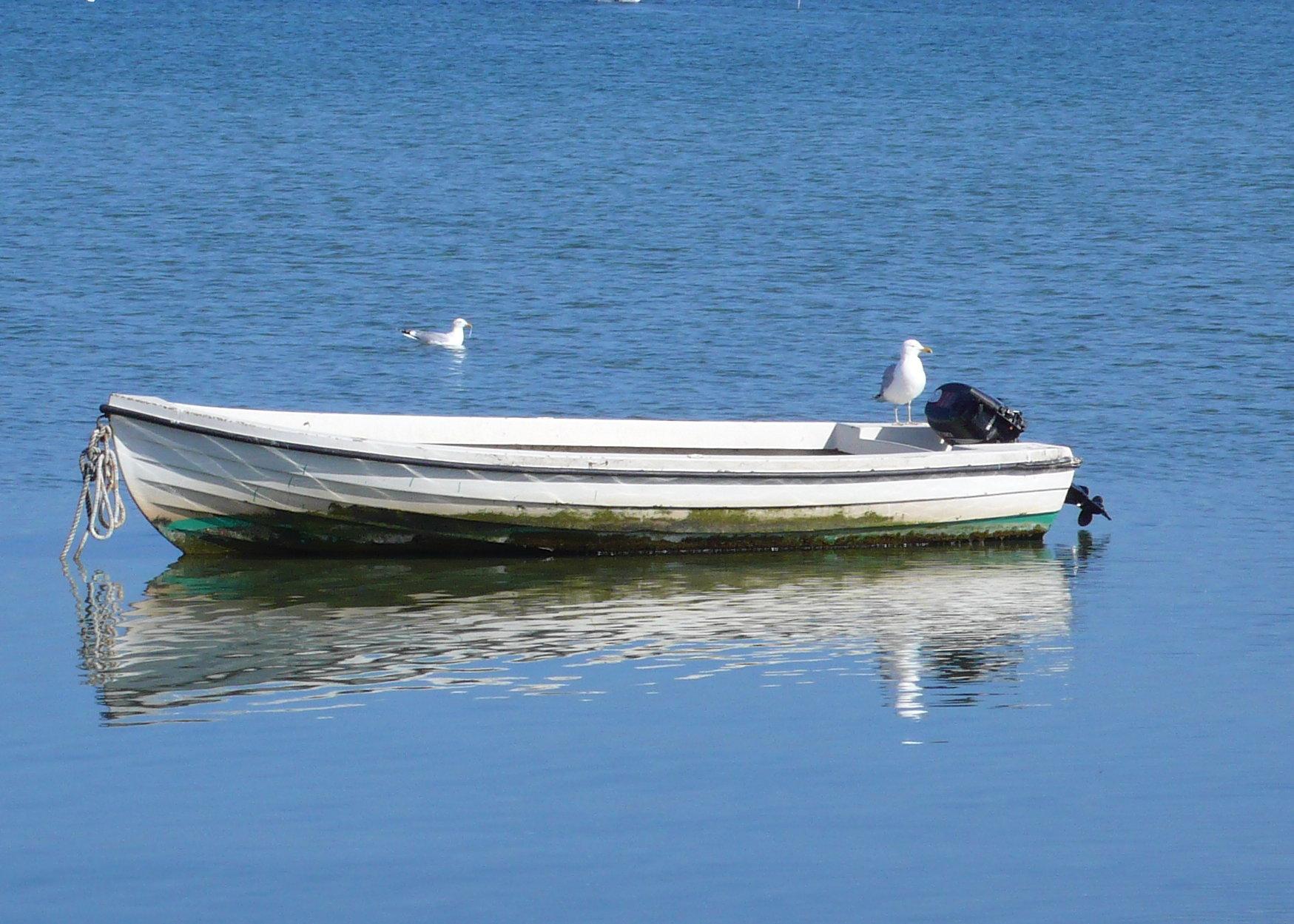 Die Möwe und das Boot, Bucht in Orth
