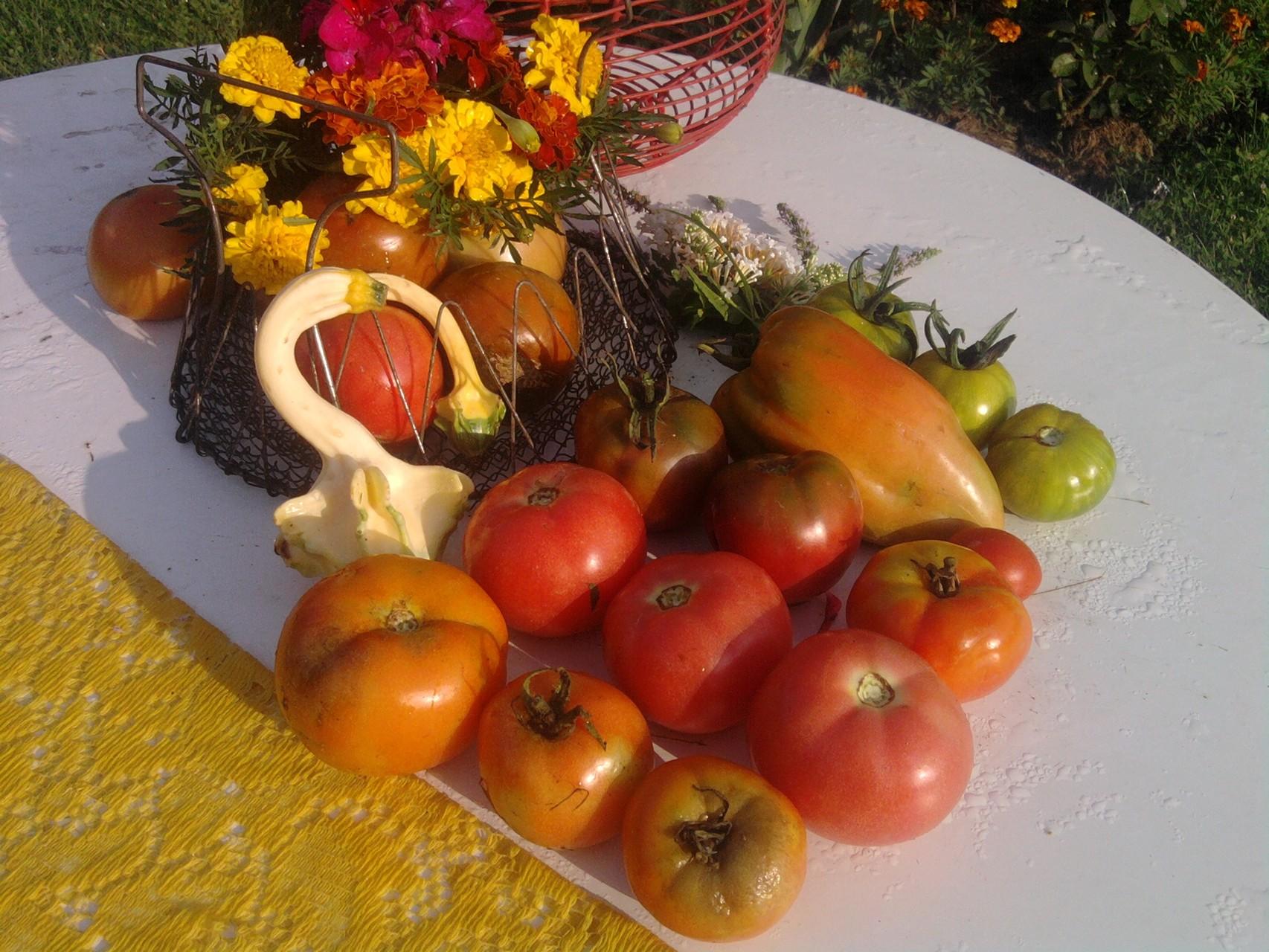 Les légumes sous toutes leurs formes