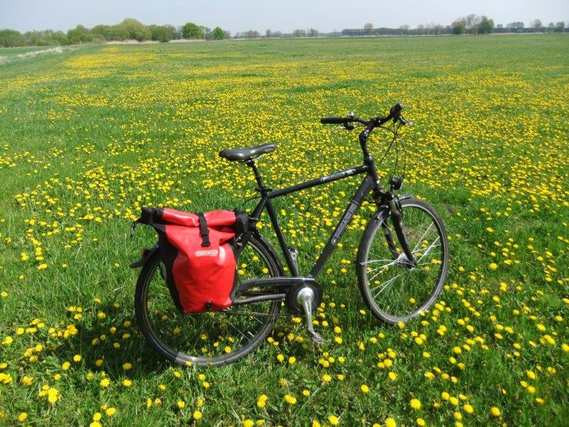 Fahrrad zu mieten