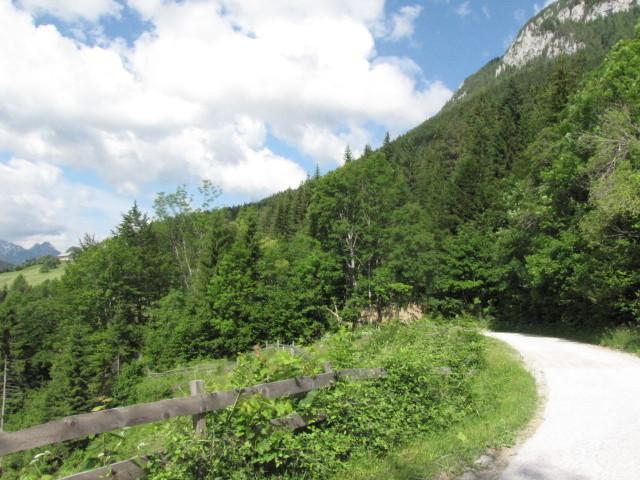 Weg Richtung Solcava