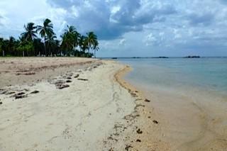 Bild: Einsamer Strand