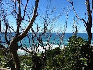 Bild: Seven Mile Beach - Blick vom Parkplatz auf´s Meer