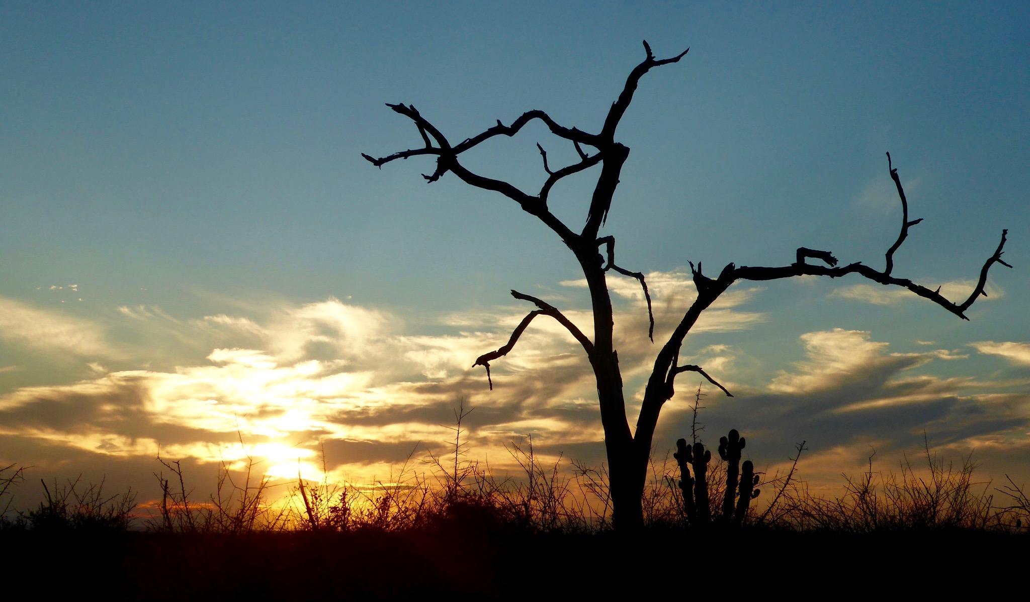 Bild: Sonnenuntergang im Hlune Royal Park