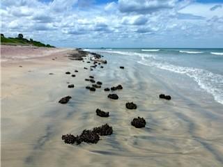 Bild: Wasser, Sand und Steine