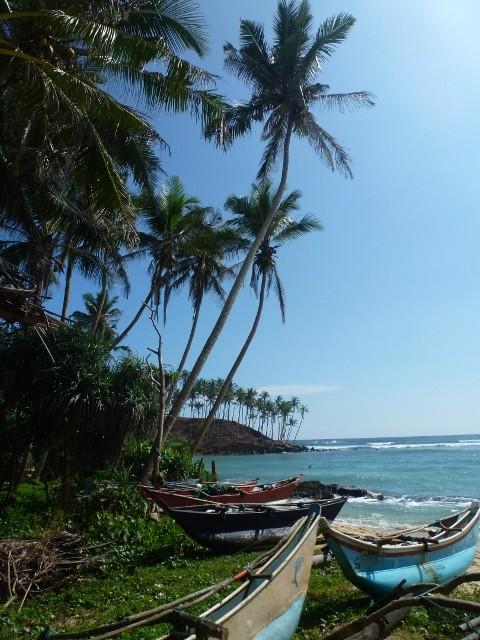 Bild: Am Strand von Mirissa