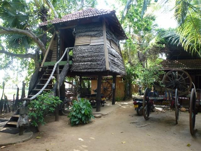 Meine Hütte in Arugam Bay