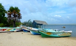 Bild: Boote am Strand