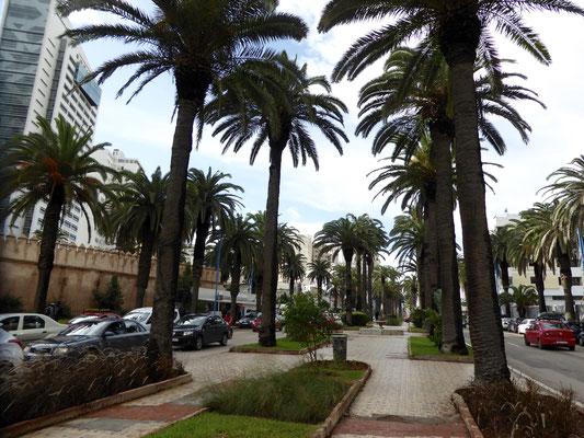 Bild: Straße in Casablanca
