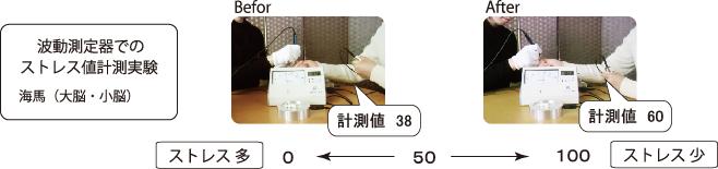 脳エステ IRON45°ヒーリング|高波動の精油を使い自律神経の働きを整え脳のストレス、心と身体を癒すプライベートサロンLuana(ルアナ)|和泉市