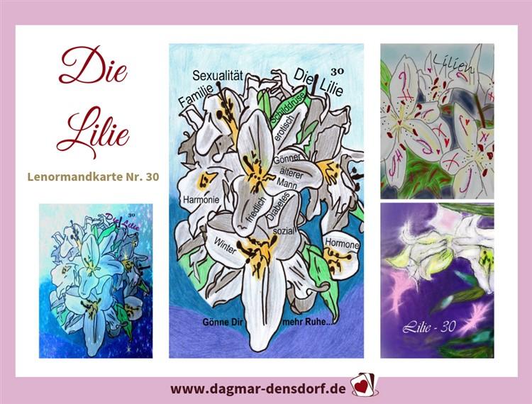 lenormandtageskarte-lilie