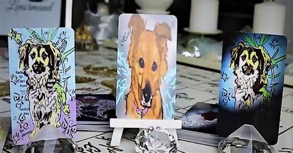 Lenormandkarte der Hund verschiedene Lenormandkartendecks