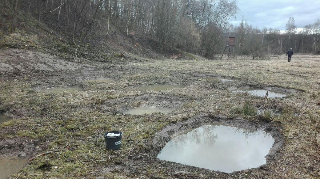 Die Standorte sind so nass, dass die Gewässer sofort volllaufen (Bild: K. Weddeling)