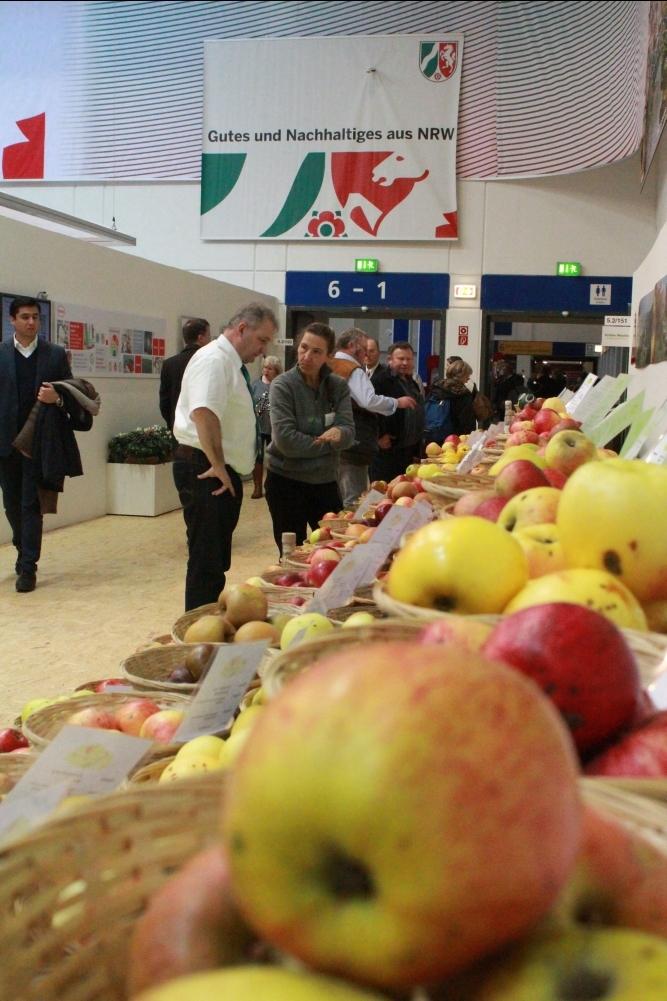 Das Interesse am Thema Obstsorten ist ungebrochen