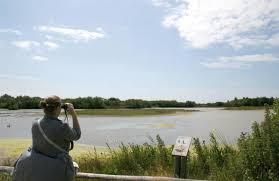 autour de la VILLA ST VAL b&b en baie de somme le PARC ornithologique du Marquenterre