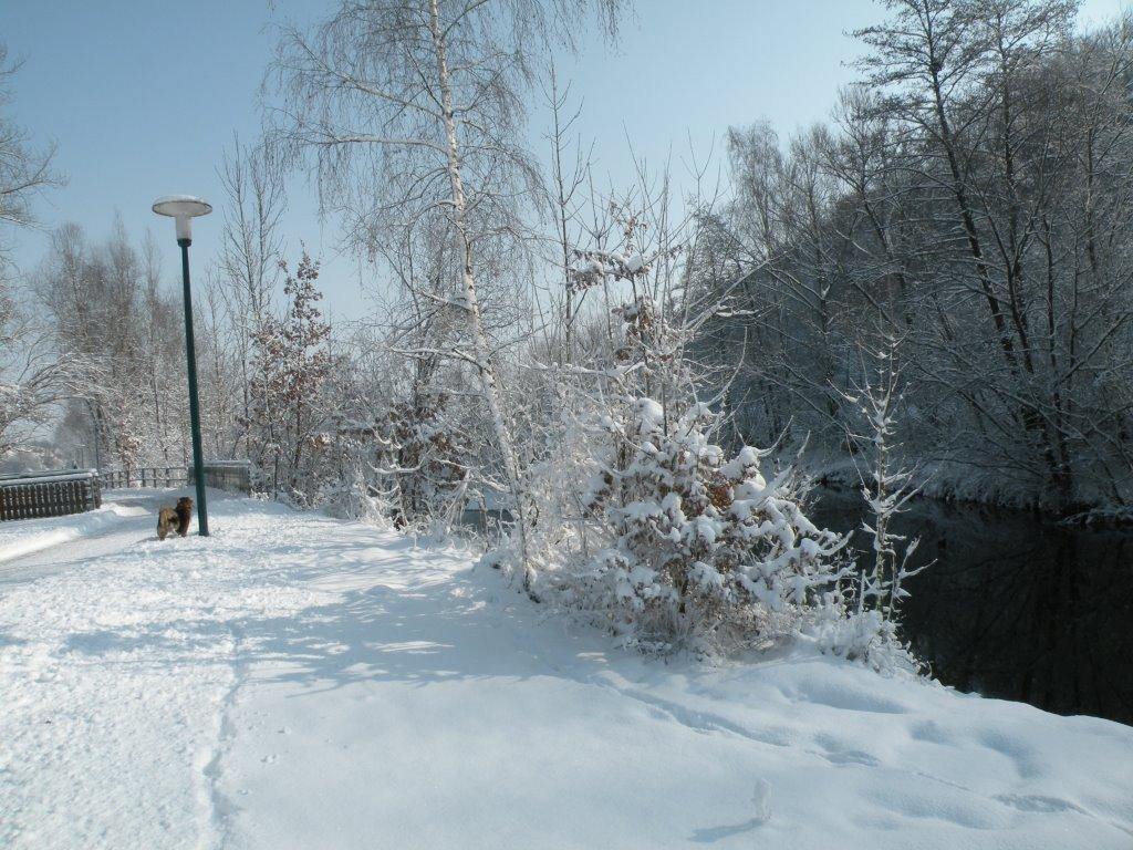 Naturlehrpfad im Winter
