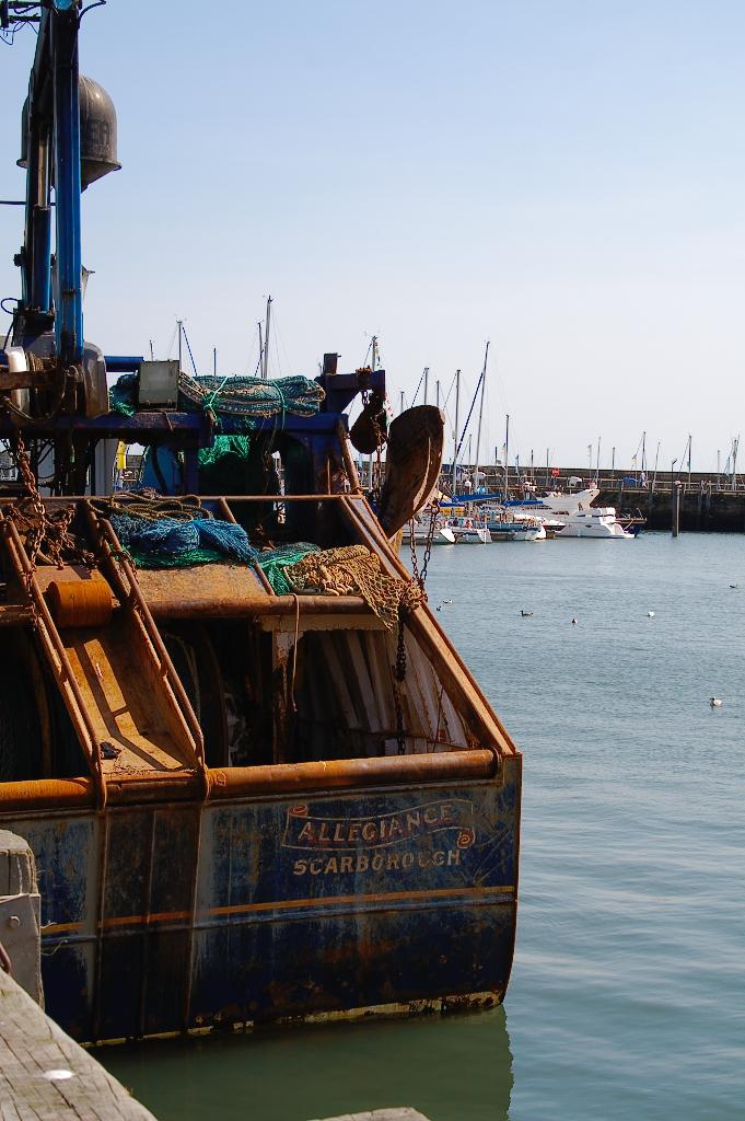 (M)ein Tag am Meer - Scarborough Schiff im Hafen - Zebraspider DIY Blog