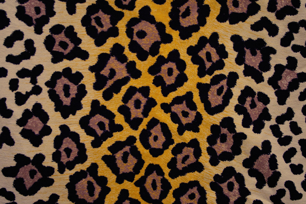 So malst du ein Leopardenmuster das rockt! - Jaguar - Zebraspider DIY Blog